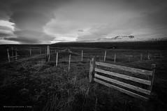 Icelandic Gate (Nicholas Olesen Photography) Tags: iceland horizontal landscape nature clouds gate field plain vast black white monochrome outdoors outside europe fence mountain sky