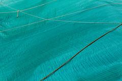 Project 365 - Eyes on the ground (Pascal Heymans) Tags: 2060 antwerpen6 fotokunst pad pictureaday project365 sintjansplein zomervanantwerpen eyesontheground green groen grond grn labyrint photo photography verde vert antwerpen belgi be canoneos6d pascalheymans