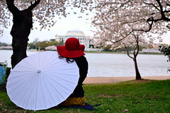 Para-where's-the-sol? (madgratter) Tags: red hat cherry dc washington memorial blossoms basin parasol jefferson tidal