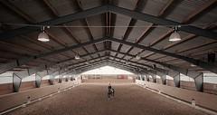 """Horse dressage """"Nsbyholm Steri"""" (Robban.W) Tags: horse nikon sweden stall event pony nikkor stable barva dressage tvling ponny sdermanland dressyr 1424 stngns nsbyholm nsbyholmsteri"""