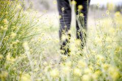 Running Away (istar-famiredo) Tags: flowers woman flores verde green yellow landscape mujer legs paisaje amarillo runningaway piernas huda