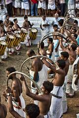 HL8A9532 (deepchi1) Tags: india elephant drums festivals horns kerala umbrellas southindia thrissur mahout pooram pachyderms drummingmusic peruvanumpooram
