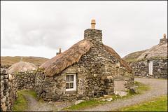 Lewis Black Houses