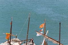 Barcas de vela latina (Joaquim F. P.) Tags: 1atrobadad'embarcacionstradicionalsdecatalunya 2015 8afiramarítima catalunya cultura iiiªfestadelamar tarragona tradición embarcacionstradicionals firamarítima patrimoniomarítimo velalatina velallatina cambrils mediterraneangoldencoast costadorada costadaurada litoral