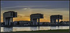 Sonnenuntergang am Rhein / sunset on the River Rhine (rapp_henry) Tags: sunset river sonnenuntergang cologne kln ufer fluss rhine rhein 2470mm28 kranhuser nikond800