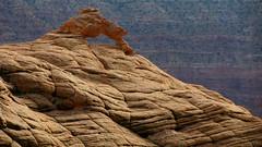 Mini Arch (Dru!) Tags: usa rock utah ut sandstone arch desert hole slickrock sedimentary escalante bedding holeinthewall utahtrip bedded