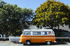 Orange VW Combi in Russell, NZ (Naomi Rahim (thanks for 2 million hits)) Tags: travel trees newzealand orange vw vintage bug outdoors nikon russell roadtrip retro wanderlust nz northisland van bayofislands combi burntorange volkeswagen 2016 travelphotography nikond7000