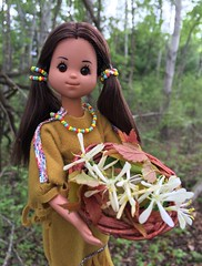 Medicinal Herbs (Foxy Belle) Tags: native american doll woods sunshine family vintage 1970s basket plant