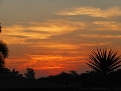 Smog Sunset (tessab101) Tags: sunset sky smog air sydney australia pollution nsw western