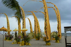 Bali Nusa Dua beach festival (rhonddalad) Tags: wedding bali seascape beach yellow festival clouds umbrellas beachview baliwedding beachflags
