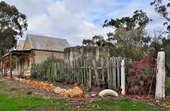 all fall down, hff! (HOLLY HOP) Tags: fence gate tank postoffice australia emu hff centralvictoria fencefriday