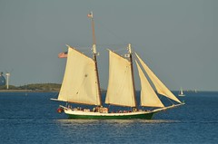S/V Liberty Clipper (jelpics) Tags: clipper libertyclipper svlibertyclipper sail sailboat sailingvessel rigging mast boat boston bostonharbor bostonma harbor massachusetts ocean port sea ship vessel