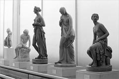 (frscspd) Tags: sculpture london film girl statue nude pentax takumar statues xp2 cast ilfordxp2 58mm mx royalacademyofarts ilford filmgrain casts pentaxmx royalacademy plastercasts takumar58mm ilfordxp2400bw 20160431 49630031