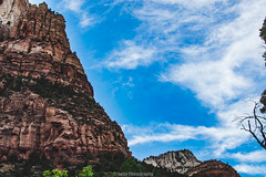 Ebb and Flow (Soler Photography) Tags: saturated zion serene sky sun lush natureisbeautiful nature relaxing landscape d3200 35mm hdr desert life blueskies calming rocky cliff peaceful c