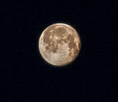 Full moon 2016-07-20 (Sky Solar) Tags: moon phase lunar light shape symmetry angle skylight electro ferro magnetic base sky night dark nightfall bright constellation stars craters cosmic illumination
