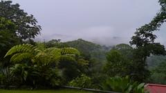 niebla (Mayan_princess) Tags: chiapas argovia finca resort caf coffee kaffee paraso paradise vegetacin vegetation verde green ro river spa relajacin relax forest selva orgnico autosostenible