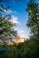 'La Moselle' (Sunrise portrait) (Lefers.) Tags: nature night sunrise stars landscape deutschland daytime duitsland mosel moesel