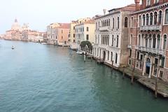 Alla Galleria Totem IlCanale Venezia Ponte Accademia - Ph © Bonazeta Arsforum 2015_33 (Omniars) Tags: art canon arte venezia galleria contemporanea 600d arsforum omniars bonazeta
