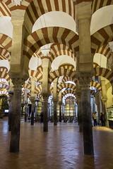 Mezquita: Forest of Columns (rafa.esteve) Tags: architecture arch columns arches mosque cordoba mezquita column