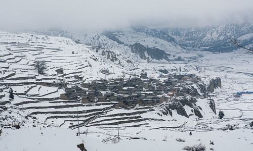 Village and terraced planting