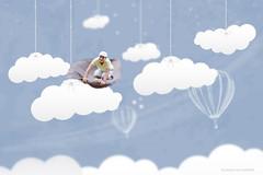 Flying Success  Miniature Fantasy Portrait (gunny_2008) Tags: sky cloud india photoshop photography miniature amazing minimal fantasy cave trick cloudporn edit udaipur lightroom miniatureworld skyporn joelrobinson fiddleoak snj9999 saurabhjainpatwari snj99999