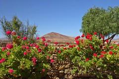 Fuerteventura tefa (CreazioniDusiero) Tags: fuerteventura selezione 0base