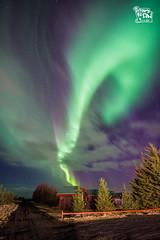 Northern light (ShengRan) Tags: light iceland aurora nikkor northern f28 hella d600 14mm