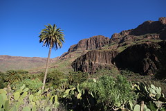 Fataga (rvr) Tags: grancanaria canaryislands barranco fataga lices7010025