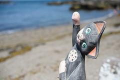 20160505-D7-DSC_9675.jpg (d3_plus) Tags: sea beach 50mm nikon fine nikkor kanagawa   50mmf14 miura  fineday  50mmf14d nikkor50mmf14    afnikkor50mmf14 50mmf14s kanagawapref nikond700 aiafnikkor50mmf14 nikonaiafnikkor50mmf14