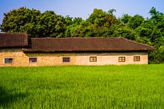 Old House (JFLI0325) Tags: leica 50mm taiwan summicron f8 cpl m9 rigid