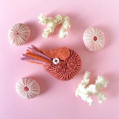 Nautilus Brooch (hine) Tags: art toy pin handmade brooch craft etsy nautilus hine  hinemizushima
