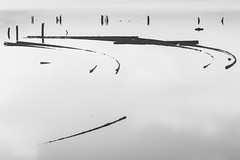 (Mat-S) Tags: wood longexposure blackandwhite water noiretblanc curves hitech stakes bois piquets courbes expositionlongue salins frontignan nd1000 bigstopper