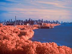 Manhattan from the George Washington Bridge (igzabeher) Tags: newyorkcity newyork ir manhattan infrared manhattanskyline hudsonriver riversidepark georgewashingtonbridge riverbankstatepark fortwashingtonpark infraredphotography newyorkcityparks hudsonrivergreenway