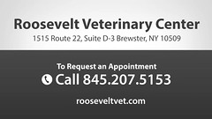 Welcome to Roosevelt Veterinary Center (rooseveltveterinarycenter) Tags: pet cats pets dogs animals surgery grooming health bathing clinic veterinarian dentist dentistry boarding veterinary laparoscopic housecalls preventativemedicine nutritionalcounseling neuterclinic wellnesscare felineboarding drallisonglassman rooseveltveterinaycenter lowcostspay
