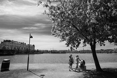 Helsinki scenes (HKI DRFTR) Tags: life people blackandwhite tree monochrome composition finland helsinki skies casual nordic everyday tones streetscenery humanelement