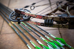 Martin Archery - Hellfire 35 (Old One Eye) Tags: compound martin bow arrows arrow archery compoundbow gt hellfire goldtip martinarchery hellfire35