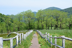 8Ikari Field Farm (anglo10) Tags: field japan kyoto seashore