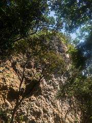 Monkey Cliff (arkeldiary) Tags: canon g16 eos 100d mountains forests trees nature sky landscape coast sea sand beaches clouds sunrise wildlife insects butterflies corals reefs rocks waves horizons seascapes coastallandscapes explore exploration travel