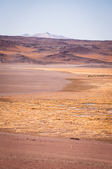 Vast (look for the little llama) (ckocur) Tags: chile atacama sanpedrodeatacama northernchile atacamadesert
