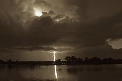 Sepia Strike (It's my whole damn raison d'etre) Tags: sepia tone lightning storm chesapeake bay water eastern shore maryland talbot county saint michaels brown bw black white clouds trees dark night nikon d800e alex erkiletian