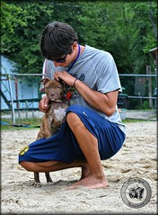 DSC_0494 (#PixbyHerb) Tags: pitbull americanpitbullterrier americanpitbull dog dogs doglover pixbyherb sadface beach beaches hugs