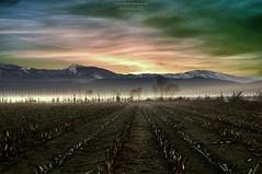 s m o k e (swaily ◘ Claudio Parente) Tags: sunset tramonto smoke nikon abruzzo swaily