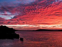 burning sky pano-8220145 (E.........'s Diary) Tags: eddie rossolympusomdem5markiiscotlandaugust2016newburghfifescotland sunset newburgh boats waterfront river tay rossolympusomdem5markiiscotlandaugust2016newbu