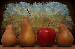 The Line Up (njk1951) Tags: fruit autumn autumnfruits apple redapple deliciousapple pears boscpears thelineup texture walltexture wood woodtable red crookedstems stems