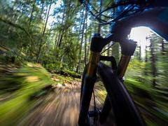GoPro Selfies (Ronia Nash) Tags: biking mountainbikes selfie trek squamish