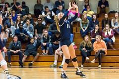 2016-10-14 Trinity VB vs Conn College - 0183 (BantamSports) Tags: 2016 bantams college conncollege connecticut d3 fall hartford nescac trinity women ncaa volleyball camels