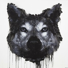 Canis lupus, 2014, 150 x 150cm, spray can & acrylic on MDF.