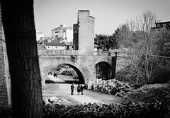 Pavia, castello visconteoVisconteo castle (simonescordino) Tags: park white black castle beautiful wow amazing nikon passion adore share pv pavia d3200