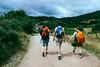 El Camino de Santiago (Cianod6) Tags: trees sky green love nature canon landscape europe camino elcamino naturephotography backpackers naturesfinest naturescene elcaminodesantiago canonphotography irishphotography vsco natureandphotography vscofilm