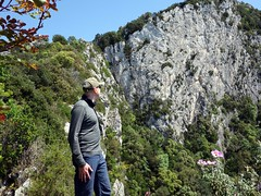 """Looking up at a cliff face • <a style=""""font-size:0.8em;"""" href=""""http://www.flickr.com/photos/41849531@N04/16926548193/"""" target=""""_blank"""">View on Flickr</a>"""
